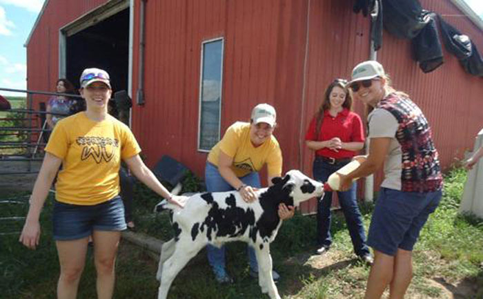 Students with farm animals - Appalachian Preceptorship Program