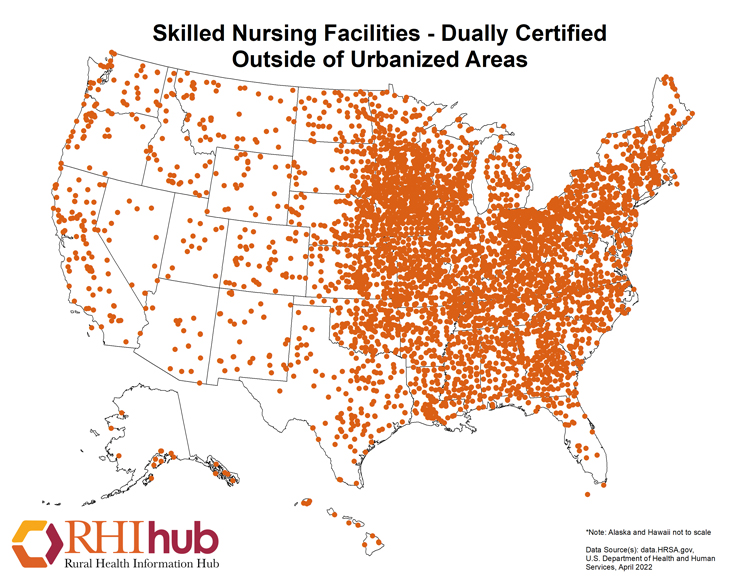 Nonmetro Skilled Nursing Facilities