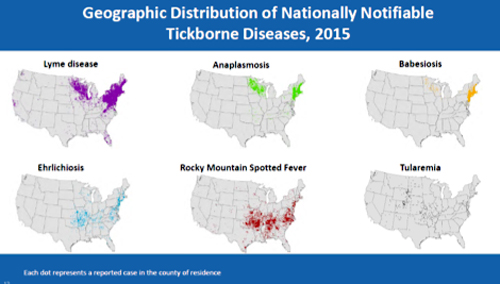 maps showing geographic distribution of tickborne diseases
