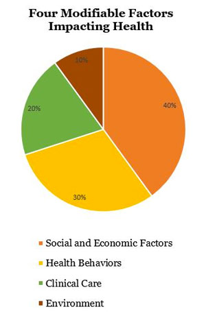 pie chart identify 4 factors impacting health