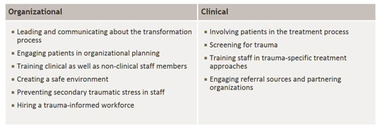 identifies organizational and clinical factors for successful trauma-informed care