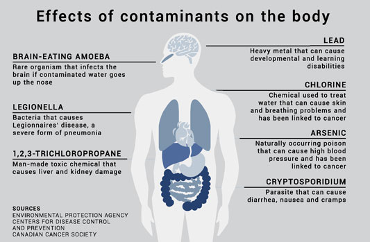graphic depicting the effects of contaminants on the body