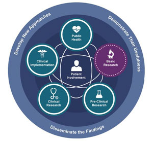 graphic depicting three aspects of translation science - develop, demonstrate, disseminate