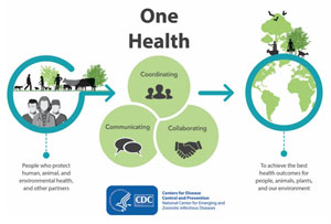 CDC One Health infographic