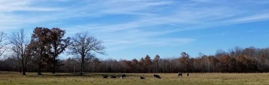 Wisconsin rural landscape.