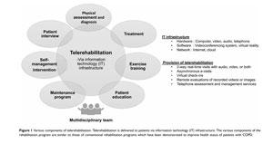 infographic on telerehabilitation for pulmonary rehab